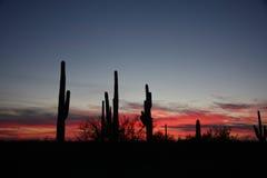 Sunset in Arizona's Wolf Moon Stock Photos