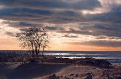 Sunset At Frozen Gulf Stock Photography