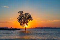 Free Sunset At Klong Muang Beach In Krabi Stock Photos - 189058543