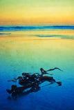 Sunset on atlantic coast Royalty Free Stock Photo