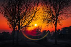 Sunset and an attractive lens flare along a tree lined residential avenue in winter when the bare trees silhouette against the. Golden dusk sky royalty free stock photos