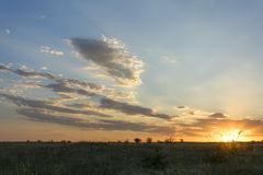 Sunset in August Stock Image