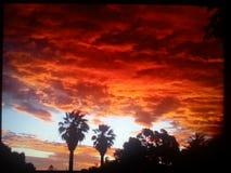 Sunset2 Austrália 2014 Fotografia de Stock