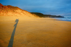 Huge shadow of a backpacker on Australian beach during sunset Stock Photography