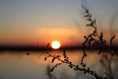 Sunset. Autumn sunset on the lake Royalty Free Stock Images