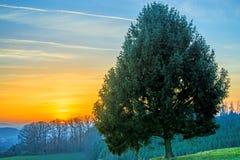 Sunset in autumn Stock Image
