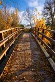 Sunset autumn wood bridge Parque de Turia Stock Photo