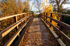 Sunset autumn wood bridge Parque de Turia Royalty Free Stock Images
