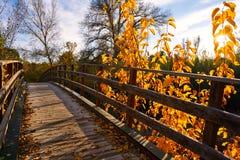 Sunset autumn wood bridge Parque de Turia Royalty Free Stock Photos