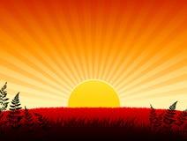 Sunset background Stock Image