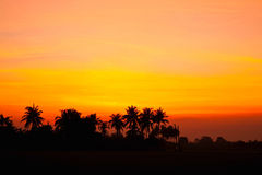 Sunset background Royalty Free Stock Image
