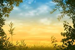 Sunset Background Stock Photography