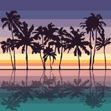 sunset background and palms Royalty Free Stock Photos