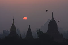 Sunset of Bagan. The sunset is really beautiful in Bagan, everything is calming down Royalty Free Stock Image
