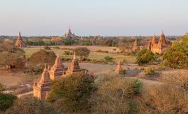 Sunset in Bagan Stock Image