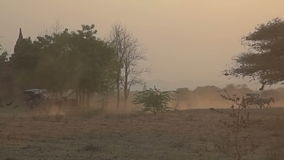 Sunset in Bagan with a horse cart stock footage