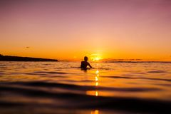 Sunset in Bali and surfer waiting for wave Royalty Free Stock Image