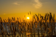 Sunset on the Baltic Sea. stock photography
