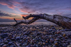 Sunset on the Baltic Sea Stock Image