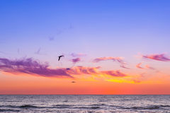 Sunset at Baltic sea in resort Palanga, Lithuania Royalty Free Stock Photography