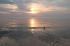 Sunset,. Baltik sea, warm, summer evening Stock Image