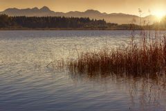 Sunset on a bathing lake in Bavaria, Germany Royalty Free Stock Photo