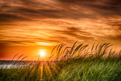 Sunset At The Bay. Stock Images