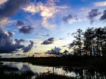 sunset on the bayou in Swamps stock photography