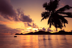 Sunset beach. In seychelles island Royalty Free Stock Photos