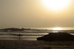 Sunset on the beach. Surfer walking on the beach at sunset Stock Image