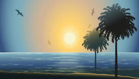 Sunset in a beach. Silhouettes of palms against Sunset in a beach Royalty Free Stock Images