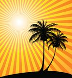 Sunset on the beach. With palm trees Royalty Free Stock Photography