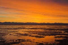 Sunset at the beach. During low tide Royalty Free Stock Photo