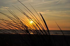 Sunset at the beach. Brilliant sky at sunset along the beach royalty free stock photography