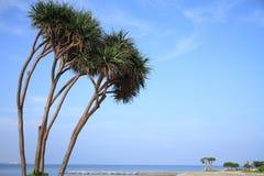 Sunset beach in Chatan, Okinawa Stock Photography
