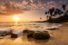 Sunset on the beach with coconut palms. Royalty Free Stock Photos
