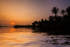 Sunset on the beach with coconut palms. Stock Photos