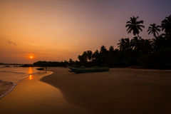 Sunset on the beach with coconut palms. Stock Photo