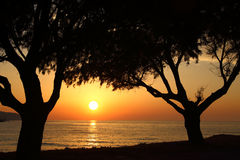 Sunset on the beach with dark trees Royalty Free Stock Photos