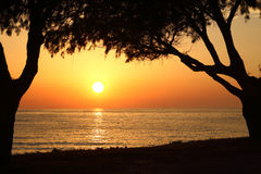 Sunset on the beach with dark trees Royalty Free Stock Image
