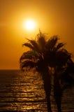 Sunset beach, evening sea Royalty Free Stock Photography