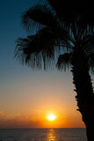 Sunset beach, evening sea, palm trees Stock Photos