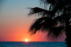 Sunset beach, evening sea, palm trees. Trave Royalty Free Stock Image