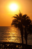 Sunset beach, evening sea, palm trees Royalty Free Stock Images