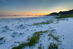 Sunset on the beach with green grass on the foreground. Norway Stock Photo