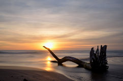 Sunset at the beach, long exposure shot Royalty Free Stock Images