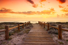 Sunset beach in natural park the Gabo de Gata Stock Images