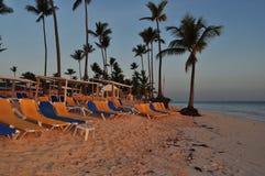 Sunset on beach. Near palms Stock Photography