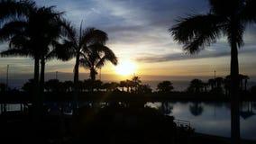 Tropical beach sunset sunrise. Palm trees Tenerifa Island Canary Spain Holidays Stock Image