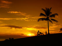 Sunset beach and palm Darwin. Sunset Darwin, mother with baby, buggy, silhoutte, palm on beach stock photography